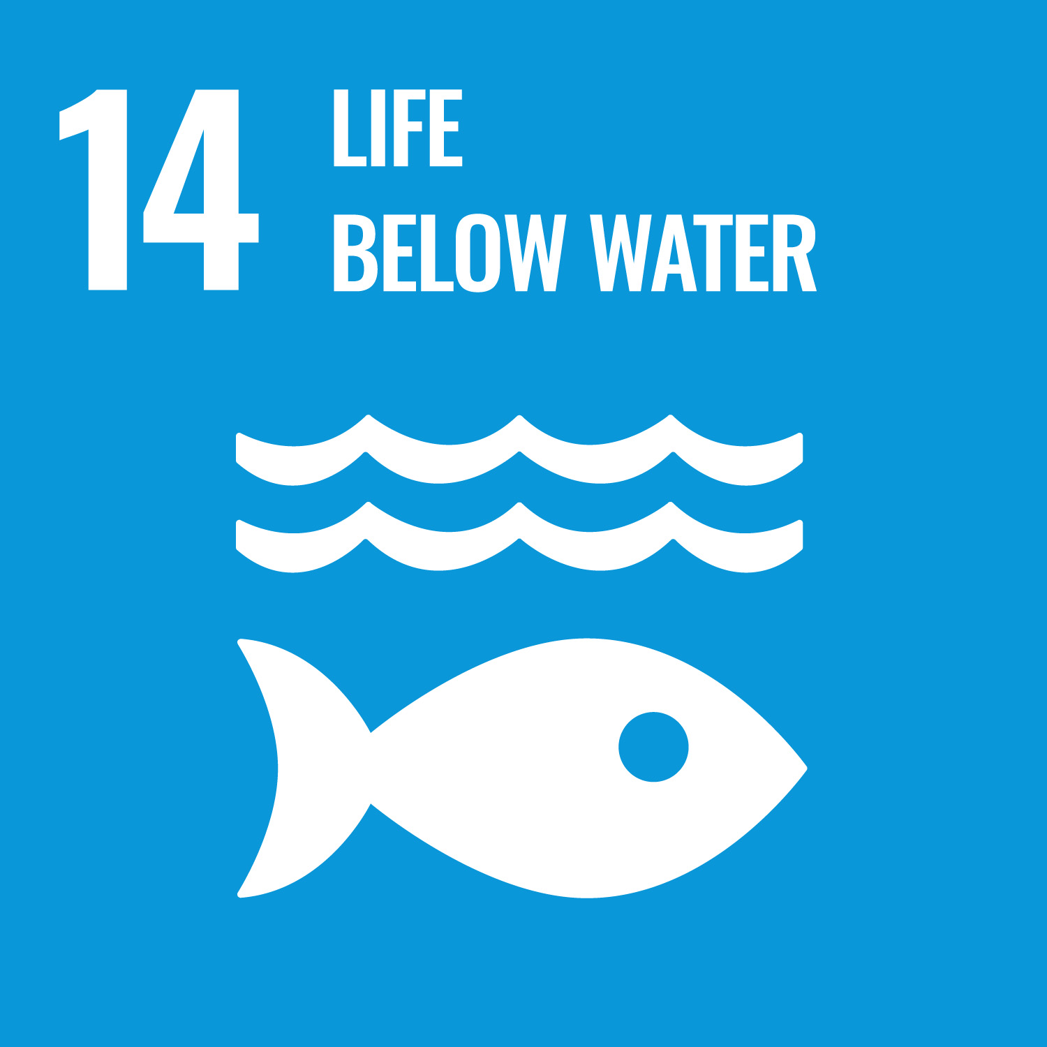 UN logo for life below water