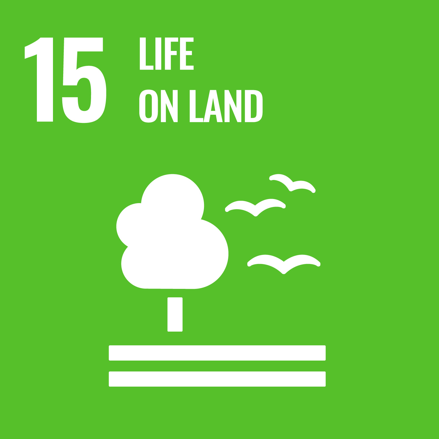 UN logo for life on land