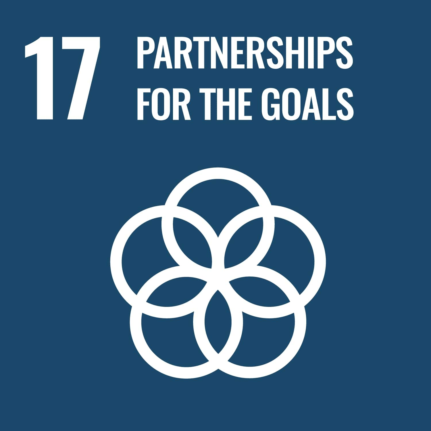 UN logo for partnerships for the goals